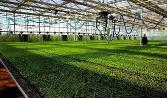 """6部门联合印发规划 """"十四五""""农业绿色发展有了路线图"""