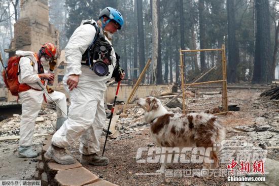 美媒:加州山火已致59死 遇�y人�祷蜻M一步上升