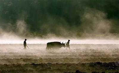 兰州牛肉面---牛肉与面带着草莽之气的缘分